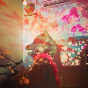 JON(犬)ライブ@名古屋 KDハポン